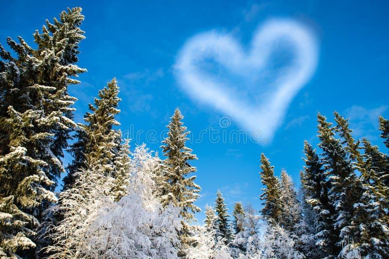 Δάσος με το μπλε ουρανό και μια διαμορφωμένη σύννεφο καρδιά για τη DA του βαλεντίνου στοκ εικόνα