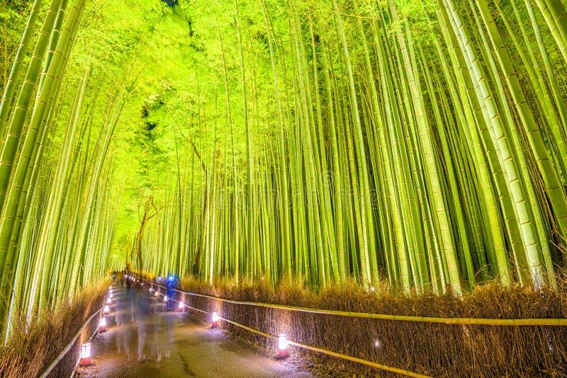 Δάσος μπαμπού του Κιότο στοκ εικόνες