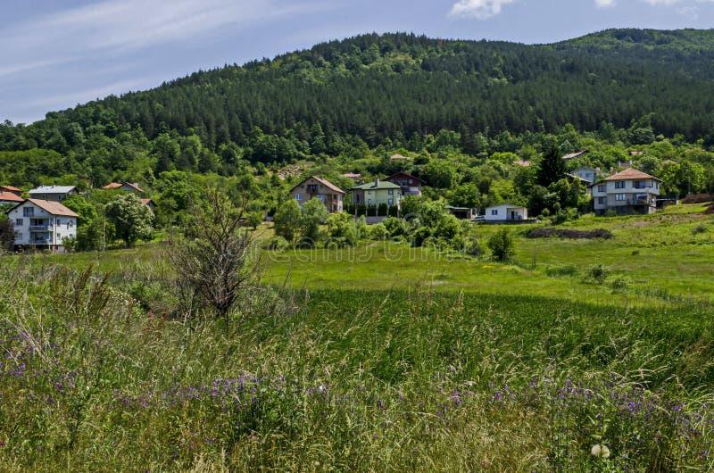 Δάσος, ξέφωτο, κάλαμος ή βιασύνη και σπίτι άνοιξης πράσινο σε μια λίμνη ομορφιάς στην κατοικημένη περιοχή Marchaevo, Sofia στοκ φωτογραφίες
