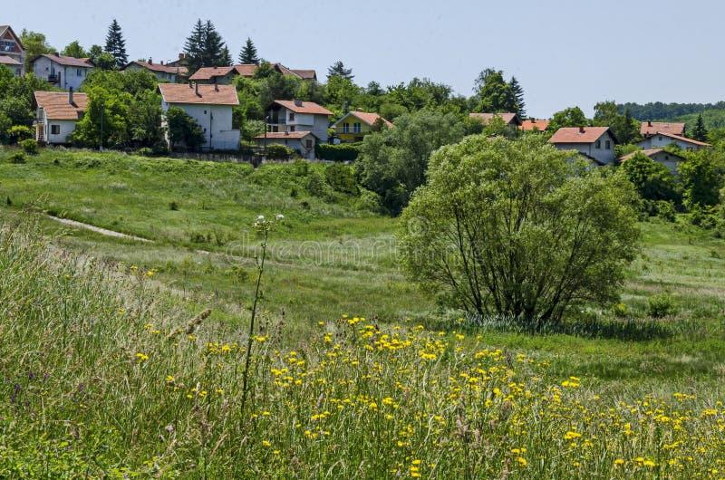 Δάσος, ξέφωτο, κάλαμος ή βιασύνη και σπίτι άνοιξης πράσινο σε μια λίμνη ομορφιάς στην κατοικημένη περιοχή Marchaevo, Sofia στοκ φωτογραφία