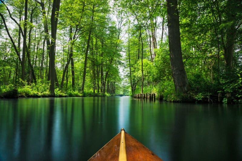Δάσος ξεφαντωμάτων γραμμών ροής κοντά στο Βερολίνο που ταξιδεύουν σε μια ξύλινη βάρκα κουπιών στοκ φωτογραφία με δικαίωμα ελεύθερης χρήσης