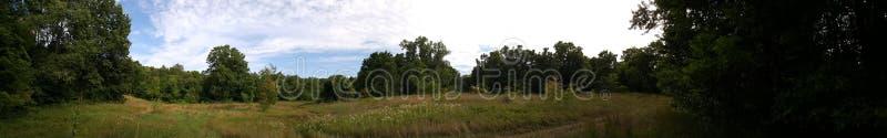 Δάσος πανοράματος στοκ φωτογραφία