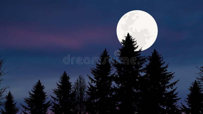 Δάσος πεύκων σεληνόφωτου στοκ εικόνες με δικαίωμα ελεύθερης χρήσης