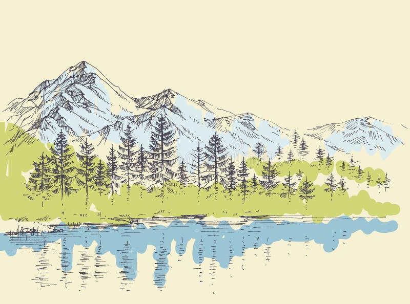 Δάσος πεύκων στα βουνά διανυσματική απεικόνιση