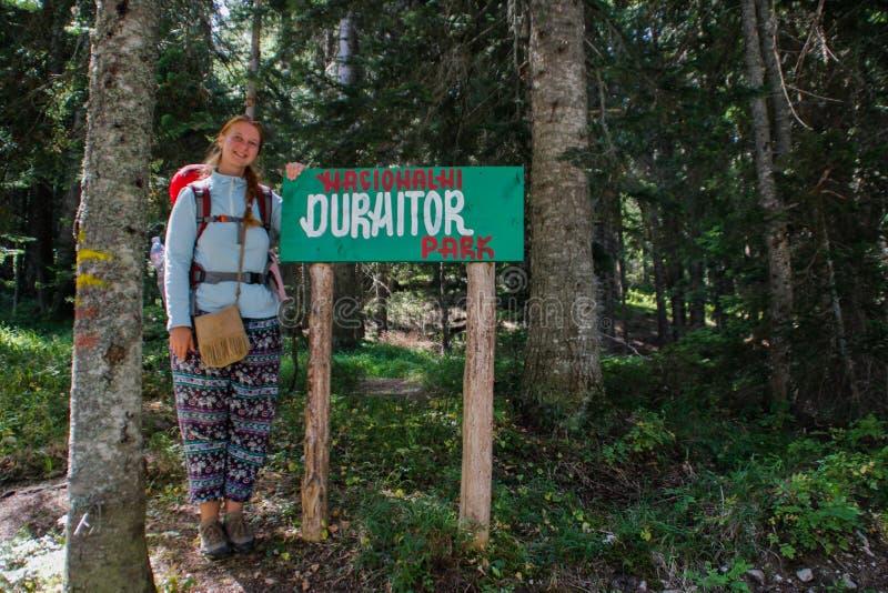 Δάσος πεύκων του εθνικού πάρκου Durmitor στο Μαυροβούνιο Στάσεις τουριστών κοριτσιών backpacker δίπλα στο πάρκο δεικτών στοκ φωτογραφίες