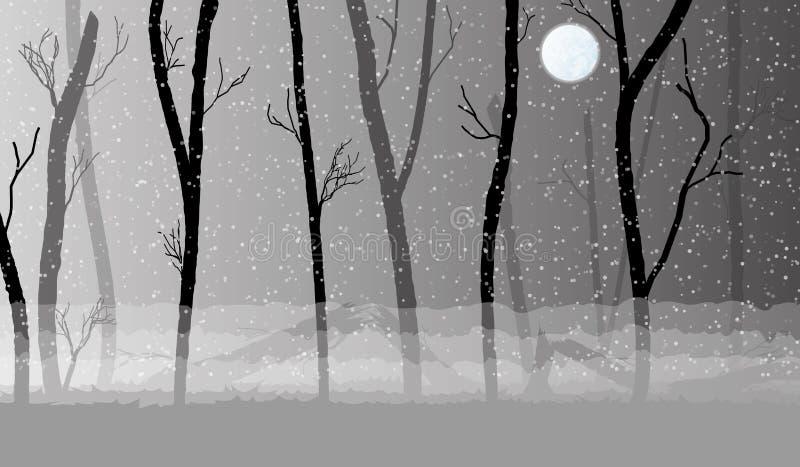Δάσος στη σκοτεινή υδρονέφωση, σκιαγραφίες δέντρων ελεύθερη απεικόνιση δικαιώματος