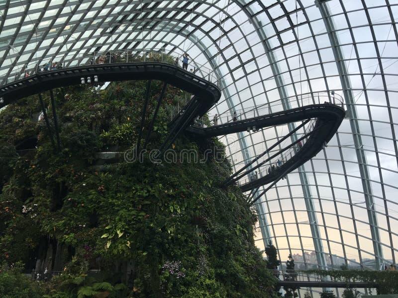 Δάσος σύννεφων στον κήπο από τον κόλπο στο ορόσημο της Σιγκαπούρης στοκ φωτογραφία