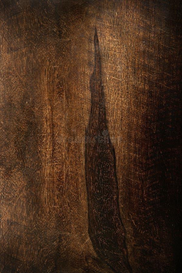 δάσος σύστασης στοκ φωτογραφία
