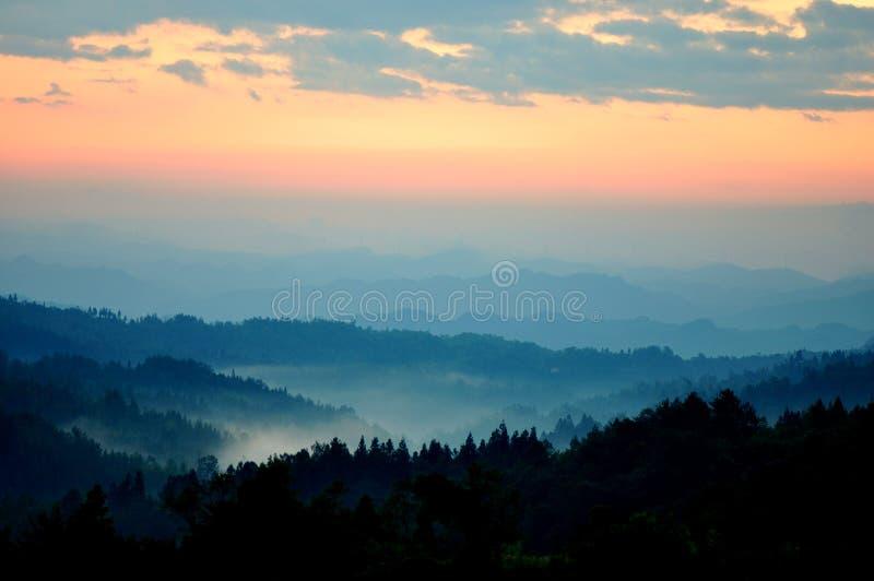 Δάσος της Misty στην ανατολή στοκ φωτογραφία με δικαίωμα ελεύθερης χρήσης