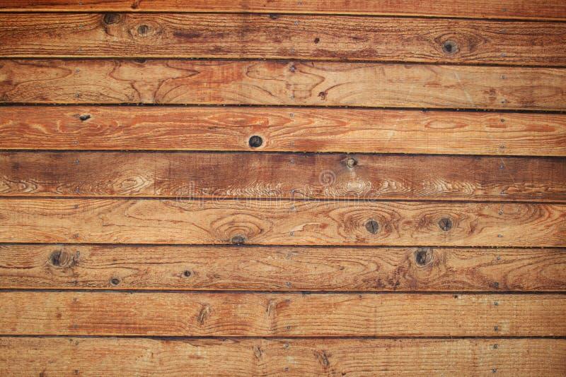 δάσος τοίχων χαρτονιών στοκ φωτογραφία με δικαίωμα ελεύθερης χρήσης