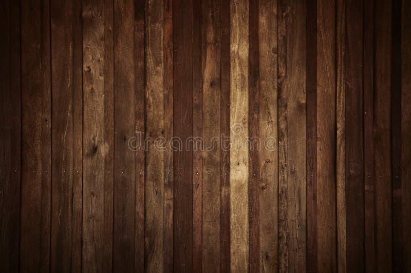 δάσος τοίχων στοκ φωτογραφία