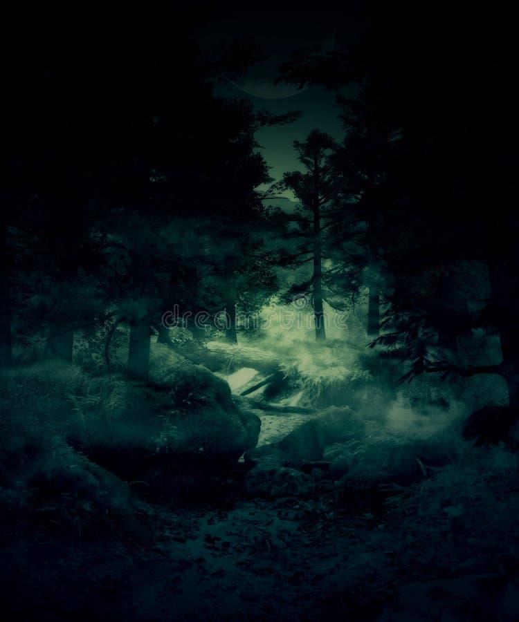 Δάσος λυκόφατος ελεύθερη απεικόνιση δικαιώματος