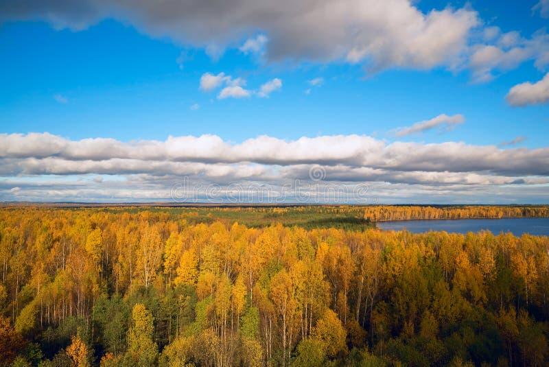 Δάσος φθινοπώρου, η άποψη από το ύψος Τοπίο φθινοπώρου στοκ εικόνα με δικαίωμα ελεύθερης χρήσης