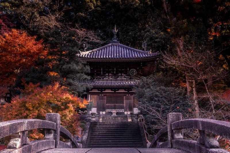 Δάσος φθινοπώρου με τα κόκκινα και κίτρινα φύλλα με έναν ιαπωνικό ναό και τα σκαλοπάτια στοκ εικόνες