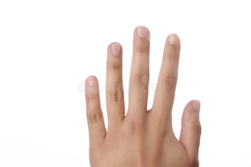 Δάχτυλα σε ετοιμότητα θηλυκό στο λευκό στοκ εικόνα
