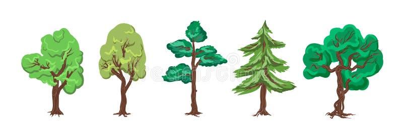 Δέντρα για έναν βοτανικό κήπο, δάσος, περίγυρος - συλλογή, VE διανυσματική απεικόνιση