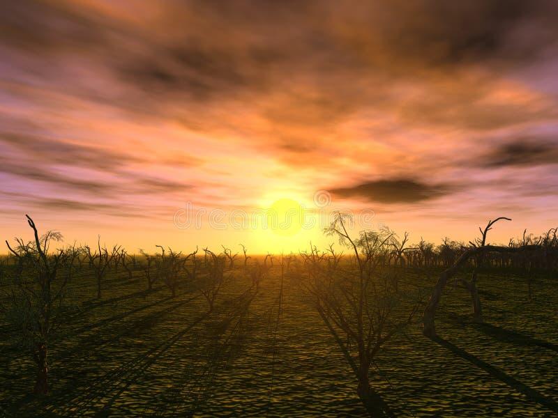 δέντρα ηλιοβασιλέματος διανυσματική απεικόνιση