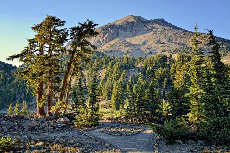 Δέντρα κέδρων και αιχμή Lassen, ηφαιστειακό εθνικό πάρκο Lassen στοκ φωτογραφία