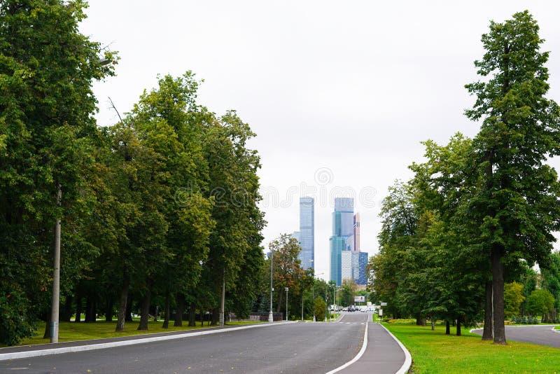 Δέντρα και ουρανοξύστες ενάντια στον ουρανό στοκ εικόνες
