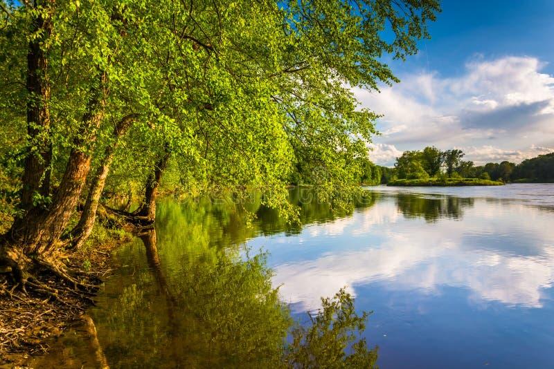 Δέντρα κατά μήκος του ποταμού του Ντελαγουέρ στο νερό Gap του Ντελαγουέρ εθνική σχετικά με στοκ φωτογραφίες με δικαίωμα ελεύθερης χρήσης