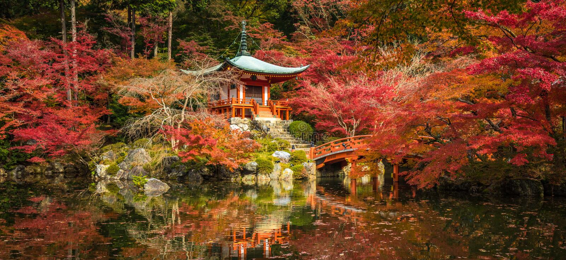 Δέντρα ναών Daigoji και σφενδάμνου φθινοπώρου στην εποχή momiji, Κιότο, Ιαπωνία στοκ εικόνες με δικαίωμα ελεύθερης χρήσης