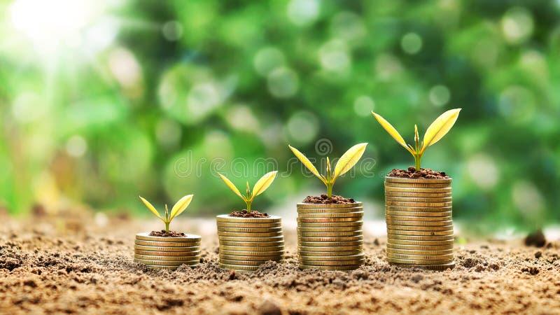 Δέντρα που αυξάνονται σε έναν σωρό των χρυσών νομισμάτων σε ένα πράσινο υπόβαθρο στοκ φωτογραφία