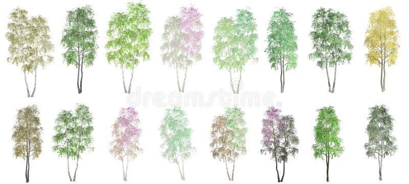 16 δέντρα σε ένα άσπρο υπόβαθρο απεικόνιση αποθεμάτων