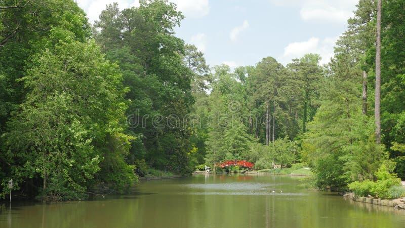Δέντρα στον κήπο στοκ φωτογραφίες