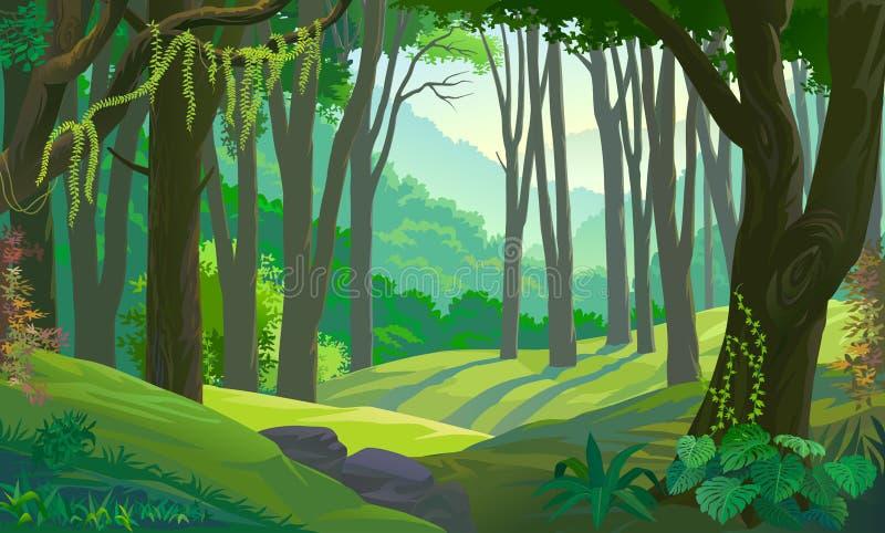 Δέντρα στους πράσινους τομείς σε ένα δάσος απεικόνιση αποθεμάτων
