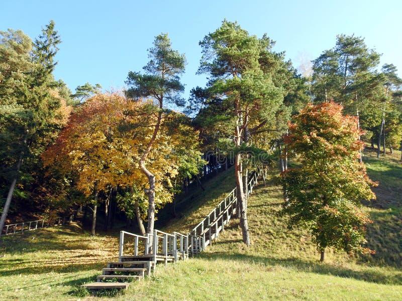 Δέντρα φθινοπώρου, λόφος και ξύλινο σκαλοπάτι, Λιθουανία στοκ φωτογραφία