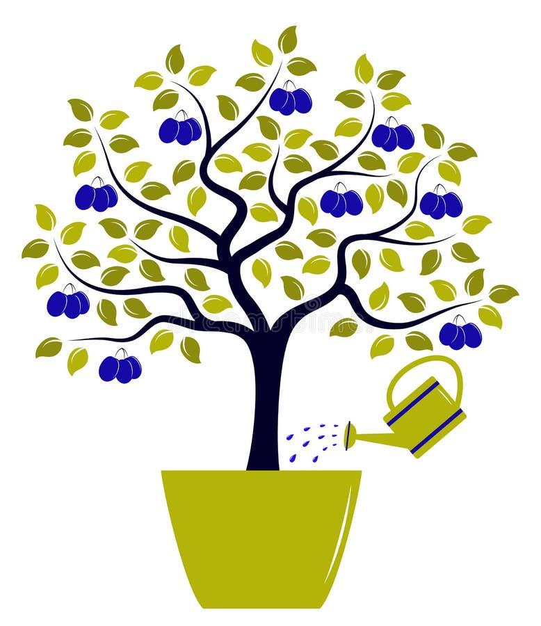 Δέντρο δαμάσκηνων στο δοχείο διανυσματική απεικόνιση
