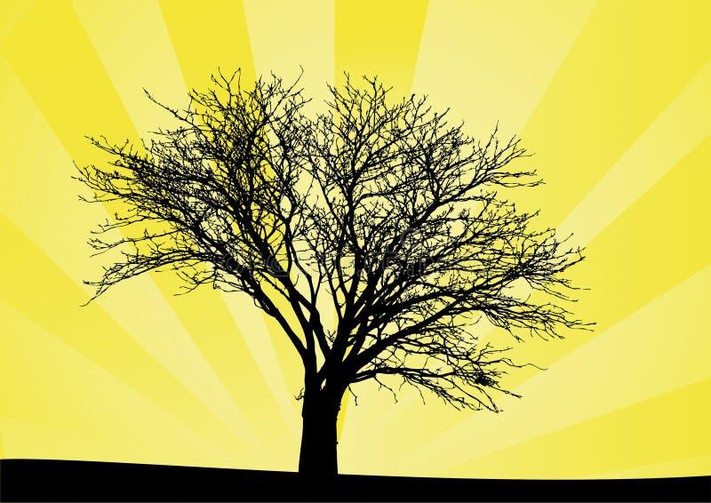 δέντρο ανατολής ελεύθερη απεικόνιση δικαιώματος