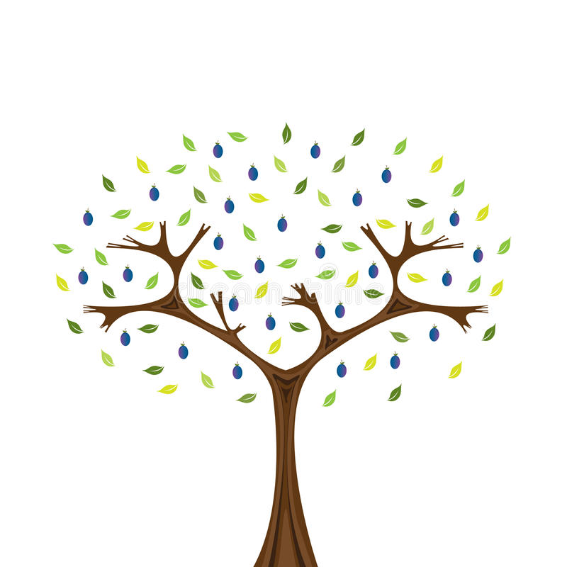 δέντρο δαμάσκηνων ελεύθερη απεικόνιση δικαιώματος