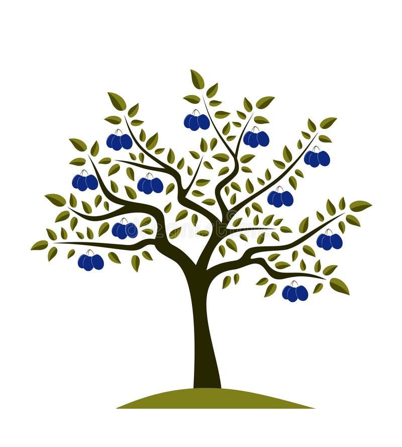 δέντρο δαμάσκηνων διανυσματική απεικόνιση