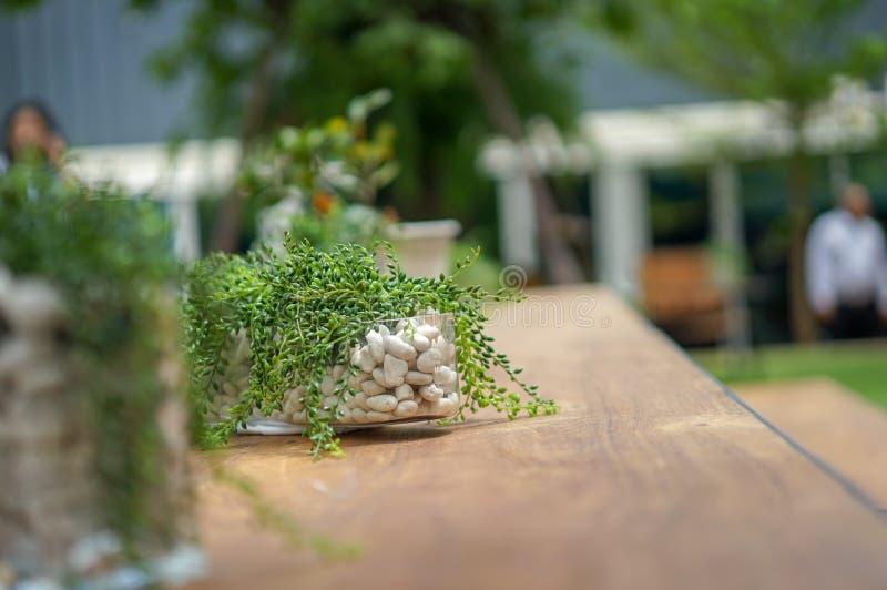 Δέντρο διακοσμήσεων στο δοχείο στο ξύλο - πίνακες χάλυβα στον κήπο στοκ φωτογραφίες με δικαίωμα ελεύθερης χρήσης