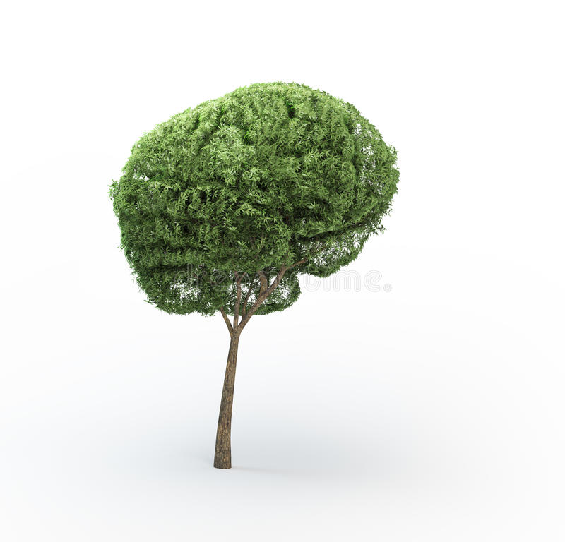 δέντρο εγκεφάλου στοκ εικόνα