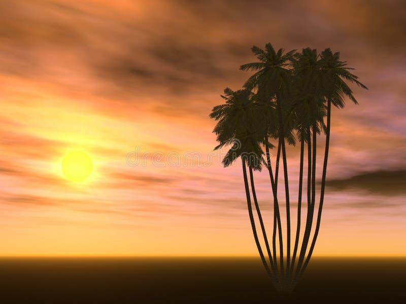 δέντρο ηλιοβασιλέματος & ελεύθερη απεικόνιση δικαιώματος