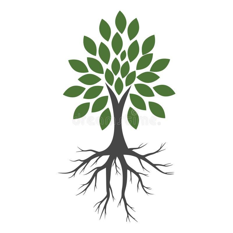 Δέντρο και εικονίδιο ριζών, δέντρο και λογότυπο ριζών ελεύθερη απεικόνιση δικαιώματος