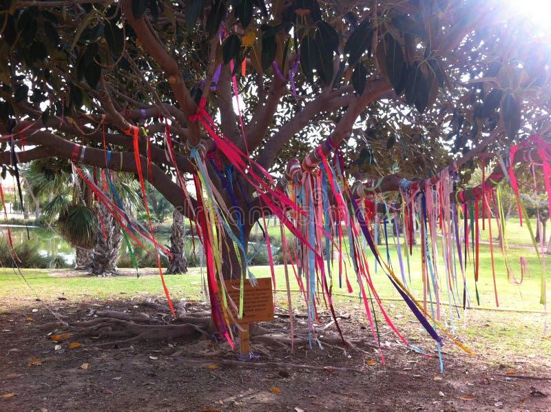 Δέντρο και κορδέλλες στοκ εικόνα με δικαίωμα ελεύθερης χρήσης
