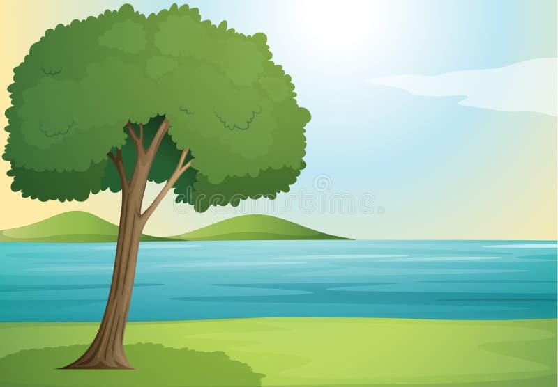 Δέντρο και ποταμός απεικόνιση αποθεμάτων