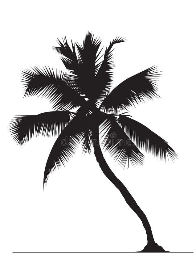 δέντρο καρύδων διανυσματική απεικόνιση