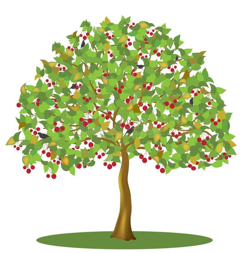 Δέντρο κερασιών με τα μούρα και τα πουλιά διανυσματική απεικόνιση