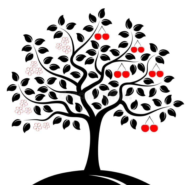 Δέντρο κερασιών σε δύο εποχές διανυσματική απεικόνιση