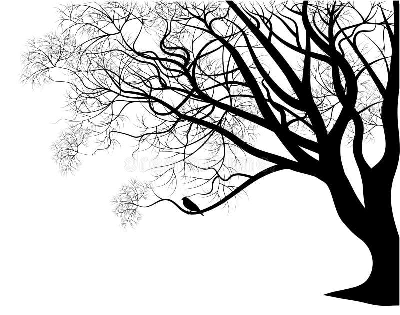 δέντρο κλάδων πουλιών διανυσματική απεικόνιση