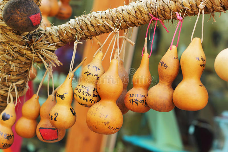 Δέντρο Κορέα Calabash στοκ φωτογραφία με δικαίωμα ελεύθερης χρήσης