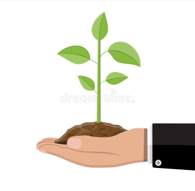 Δέντρο με τα φύλλα και το χώμα υπό εξέταση ελεύθερη απεικόνιση δικαιώματος