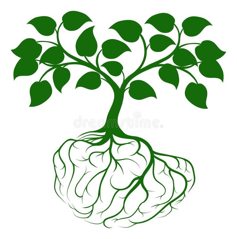 Δέντρο με τις ρίζες εγκεφάλου ελεύθερη απεικόνιση δικαιώματος