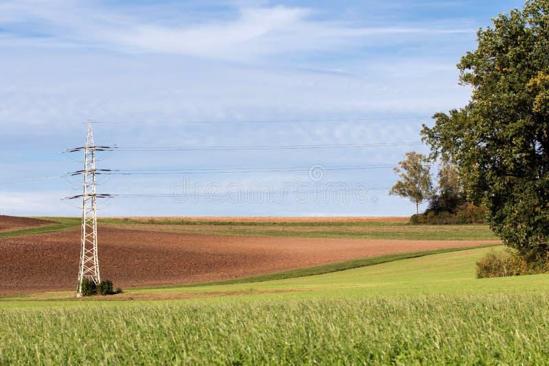 Δέντρο μπροστά από γραμμή ισχύος υψηλής τάσης στοκ φωτογραφία