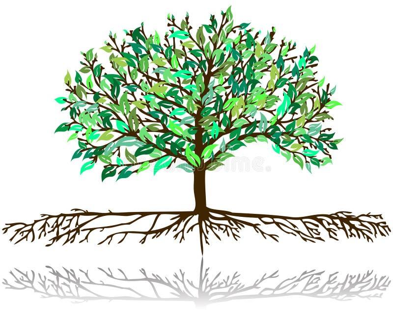 δέντρο προτύπων διανυσματική απεικόνιση
