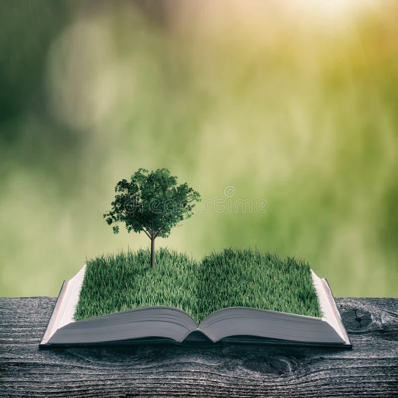 Δέντρο σε μια χλόη στις σελίδες του βιβλίου, τρύγος στοκ εικόνες